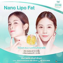 สลายไขมัน (Nano Lipo Fat)
